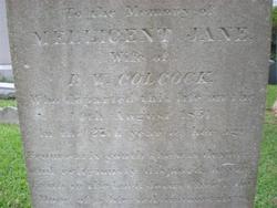 Mellicent Jane <i>Bacot</i> Colcock