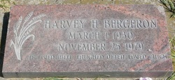 Harvey Henry Bergeron