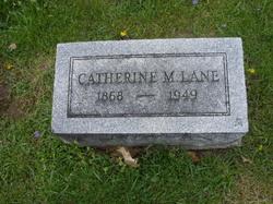 Catharine M Lane