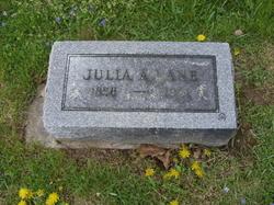 Julia A Lane