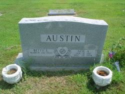 Neil Arthur Austin