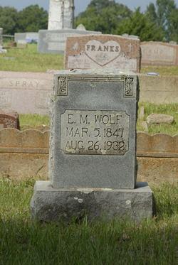 Edwin Martin Wolf