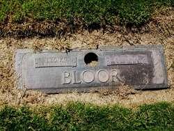 Anita J Bloor