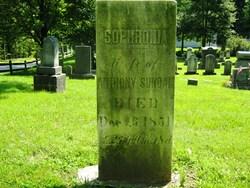 Sophronia <i>Briggs</i> Surdam