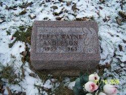 Terry Wayne Anderson