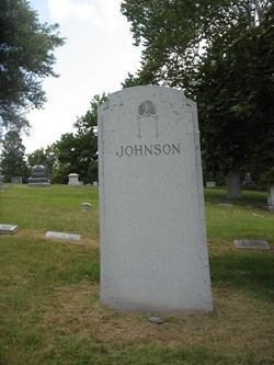 Albert L. Johnson