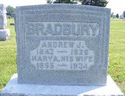 Andrew Jackson Bradbury