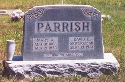 David Eli Parrish