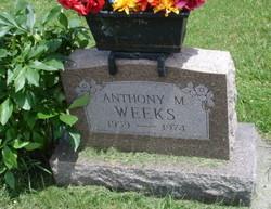 Anthony M Weeks