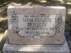 Sarah Elizabeth Sadie <i>Wellons</i> Benson