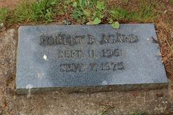 Robert B Agard