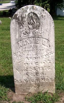 Nancy Ellen Nannie <i>Snedker</i> Andrews