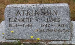 Elizabeth Ellen <i>Gowins</i> Atkinson