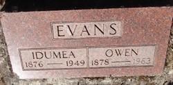 Idumea <i>Murray</i> Evans