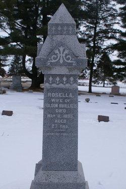 Rosella <i>Dodge</i> Baillies
