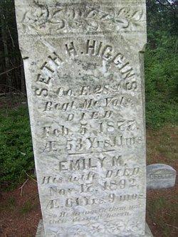 Seth H Higgins