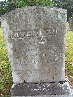 Abigail <i>Dodge</i> Lurvey