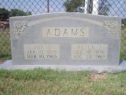 Alice Jane <i>Hinson</i> Adams