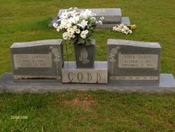 Viola <i>Hardie</i> Cobb