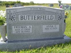 Albert Freeman Butterfield