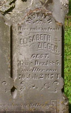 Elizabeth <i>Alt</i> Zieger