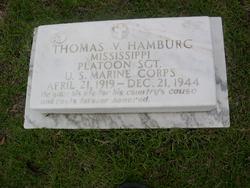 Thomas V. Hamburg