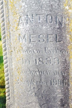 Anton Mesel