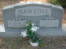 Walter Lloyd Hawkins