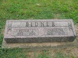Caroline <i>Steinmetz</i> Bidner