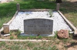 Charlie V. Alvey