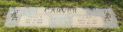 Edgar Roy Carver