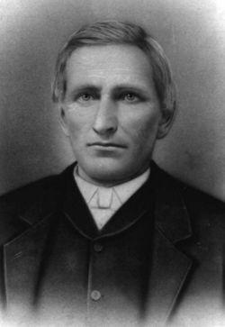 Andrew Jackson Dasher