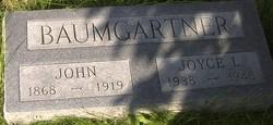 Joyce L Baumgartner