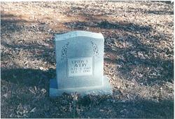 Upton S. Joe Avery