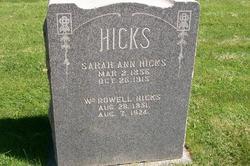 Sarah Ann Matilda <i>Newland</i> Hicks