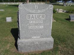 Caroline Louise <i>Fandrei</i> Bauer
