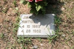 Jimmie Annie Hinton