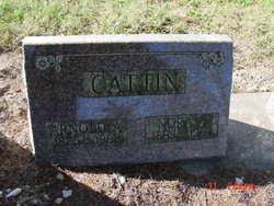 Arnold A. Cattin