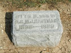 Otto D Hartman