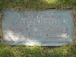 David Waldemar Anderson