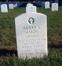 Harry L Amos