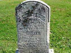 Orilla [Aurelia] <i>Kellogg</i> Graves