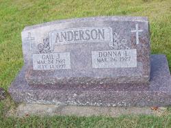 Gail J. Anderson