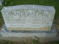 John Norwood Anderson