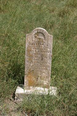 William A. Brann