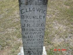 Ellowie Brumley