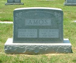 Nellie <i>Fisher</i> Amos