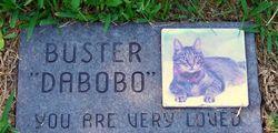 Buster Dabobo