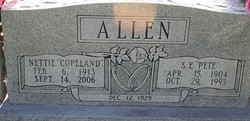 Nettie Arizona <i>Copeland</i> Allen
