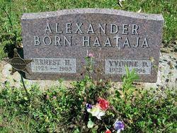 Yvonne D Alexander